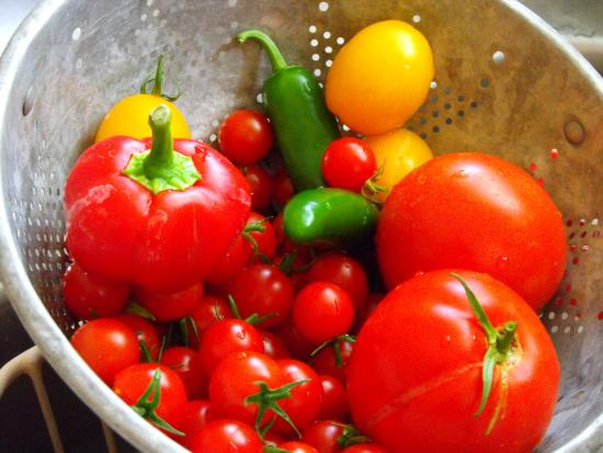 Powell, WY: It's Good Food - Not Fast Food