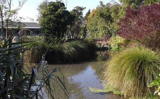 Lawn Cottages: Pond
