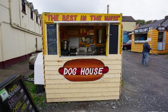Dingle Doghouse : Dingle Dogs