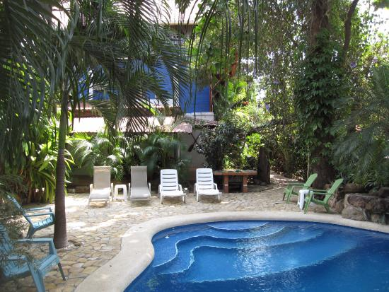 Tico Adventure Lodge: Nice swimming pool in front of my room