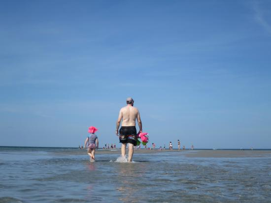 Wingaersheek Beach: So easy that a 4 year old can walk out to the sandbar without help
