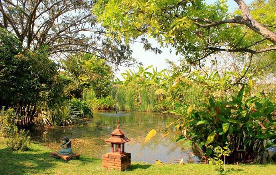 Secret Garden Chiang Mai Bo Sang Recenze A Srovn N Cen Tripadvisor