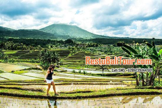 Restu Bali Tour
