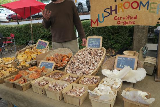 Eugene, OR: mushrooms locally harvested....samples of cooked mushrooms too
