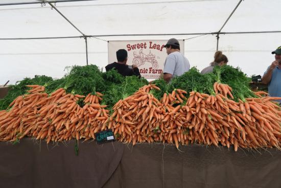 Eugene, Oregon: carrots