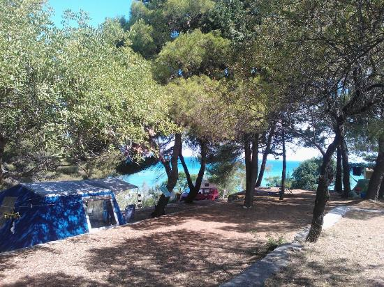 Area Tenda Con Vista Mare  Foto Di Camping Village Baia S. Black Lion Guest House. Pravonix Redshank Hotel. Apartments By Nagee. Cairns Luxury Apartments – Harbourlights Complex. Club Quarters Wacker  At Michigan Hotel. Lakesong Resort. Hotel Lux FAtima. Gombithotel