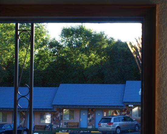 Silver Saddle Motel: Giant spider web in right corner