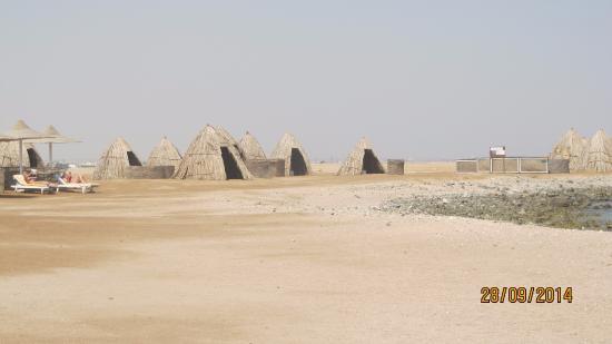 нудистский пляж в серебряном бору фото
