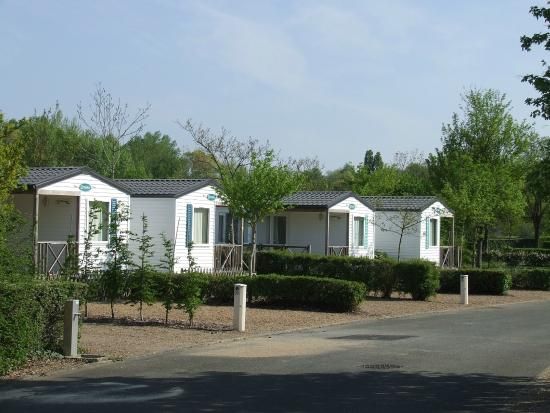 Camping d'Angers - Lac de Maine : Mobil'homes