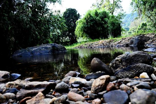 Pachibale Home Stay: Stream nearby