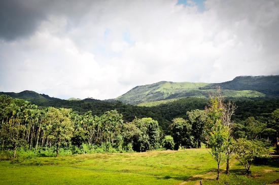 Pachibale Home Stay: View from the Room