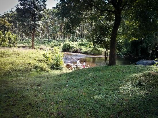 Pachibale Home Stay: Stream near the Cottage