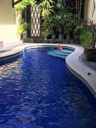 Jambu Inn : Pool