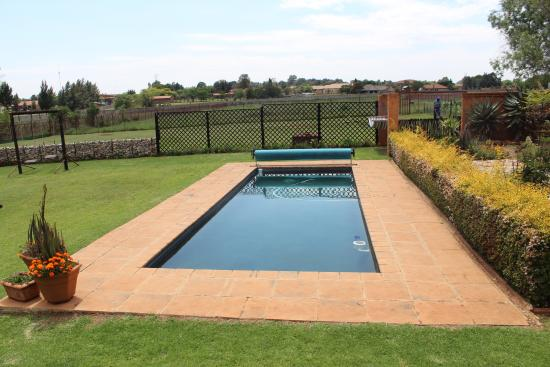 Avoca Lodge: View from Patio onto pool