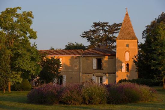 Chateau de Combis