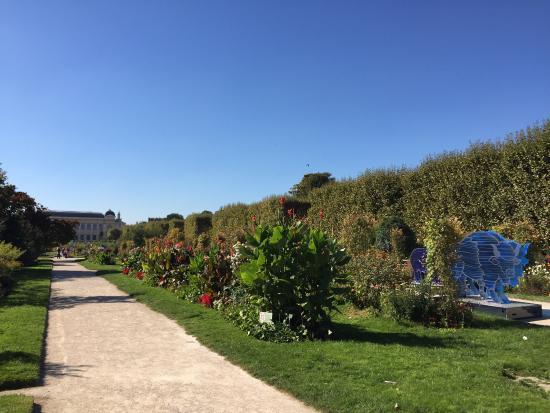 Jardin des plantes picture of jardin des plantes paris for Jardin plante