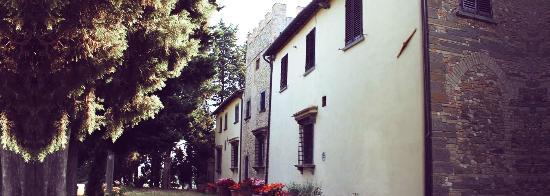 Montespertoli, Italien: Una delle torrette del castello