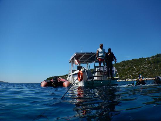 Diving Center Viking: Boat