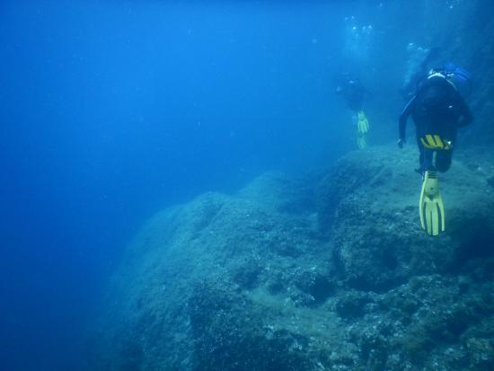 Diving Center Viking: Dive