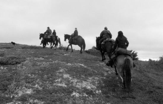 Alaska Horsemen Trail Adventures: Alaska Horsemen