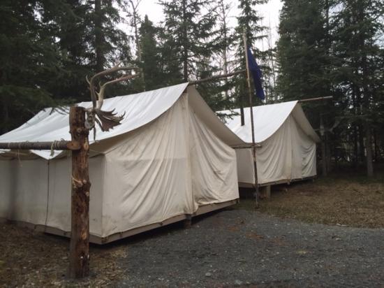 Alaska Horsemen Trail Adventures: Alaska HorAlaska Horsemensemen