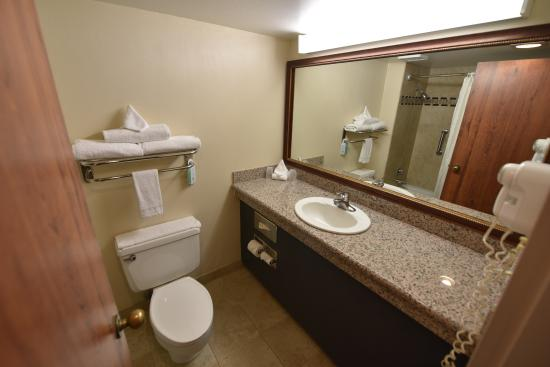 Grand Junction, CO: The bathroom was large enough and clean enough.