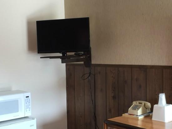 Candler, NC: Flat Panel TV and MicroFridge