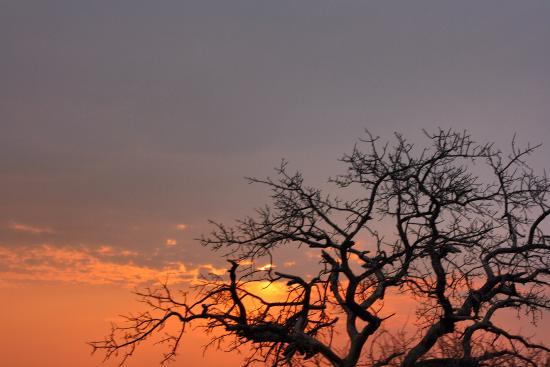 Bonana Tours & Transfers: Sunrise in Imfolozi