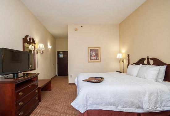 Hampton Inn Greenville / Travelers Rest: King