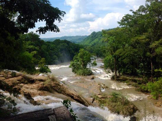 Cascadas de agua azul chiapas m xico picture of cascadas for Cascadas de agua