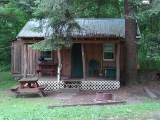 Cross Fork, PA: Cabin 1
