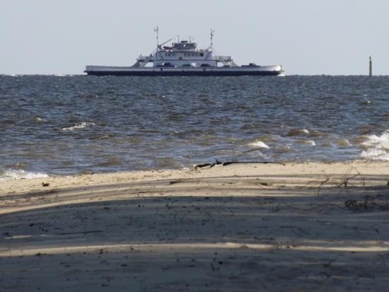 Cherry Branch Minnesott Beach Free Ferry