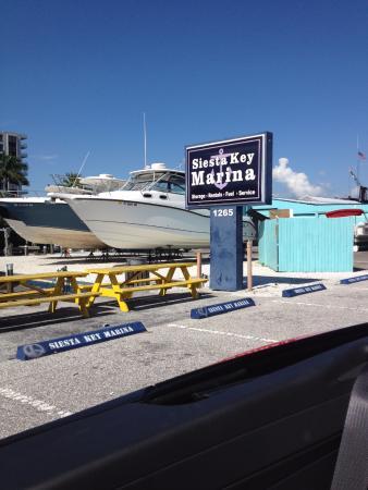 Siesta Key Marina: Marina