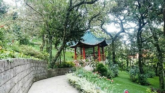Suites jardin imperial 0 for Jardin imperial