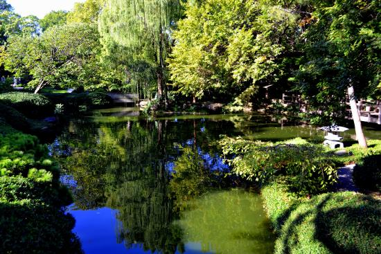 Japanese Garden within Fort Worth Botanic Garden - Picture of Fort ...