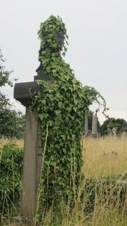 Undercliffe Cemetery: Ivy Covered Gravestone