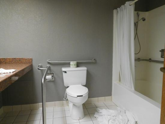 Capital Plaza Hotel: accessible bath