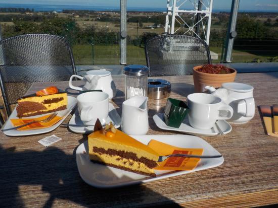 Bastorf, Alemania: Sanddorntorte mit Tee