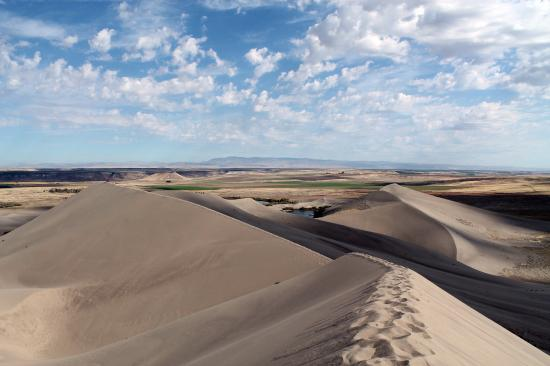 Bruneau, Idaho: View from the top