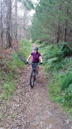 Onepu Mountain Bike Park