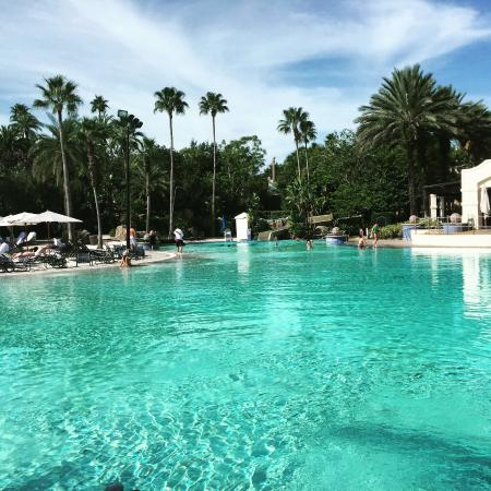Hard rock hotel pool picture of hard rock hotel at for Pool show orlando 2015