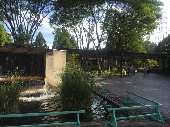 Crane Riding Center