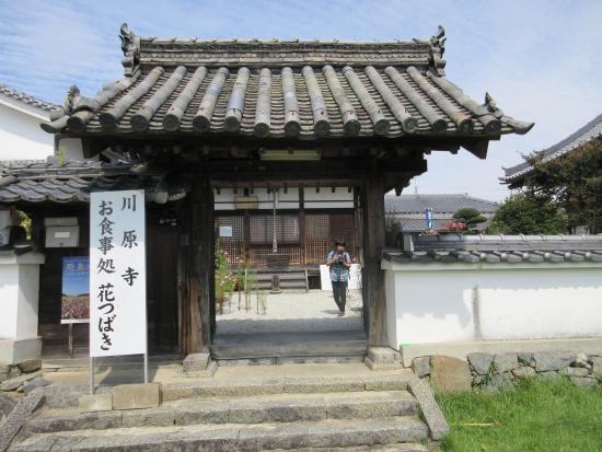 「川原寺」の検索結果 - Yahoo!検索(画像)