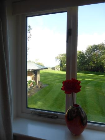 Stinchcombe, UK: Looking out the bedroom window.