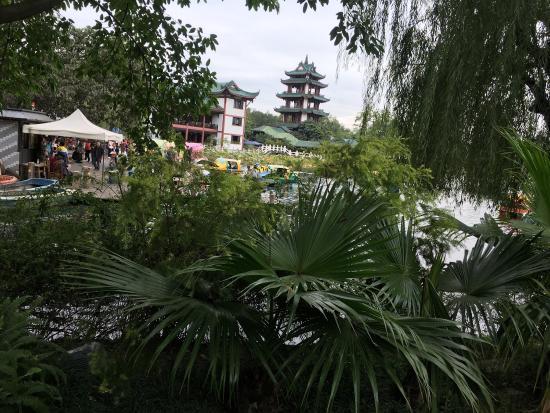 新都桂湖公园