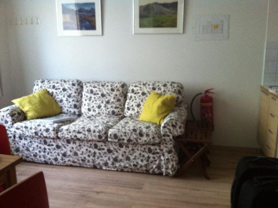 Downtown Reykjavik Apartments : lounge