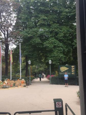 Picture of royal botanic garden real jardin for Entrada jardin botanico madrid