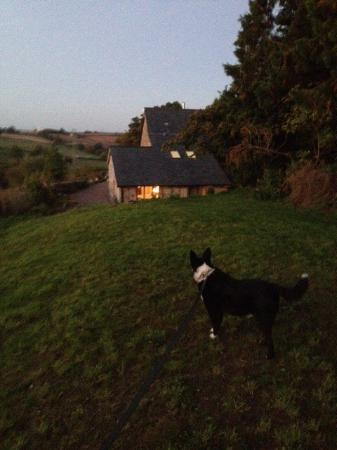 Thatch Close Farm B&B : photo0.jpg