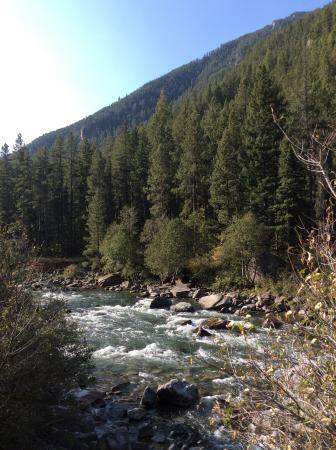 Gallatin River: Gorgeous