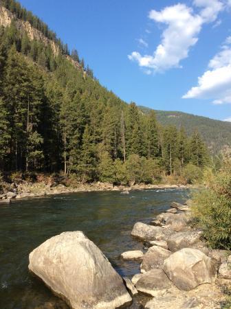Gallatin River: Sunny day